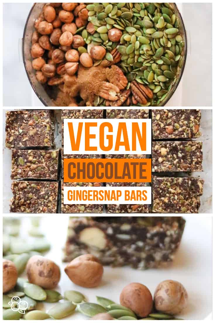 pinterest graphic for vegan chocolate gingersnap bars