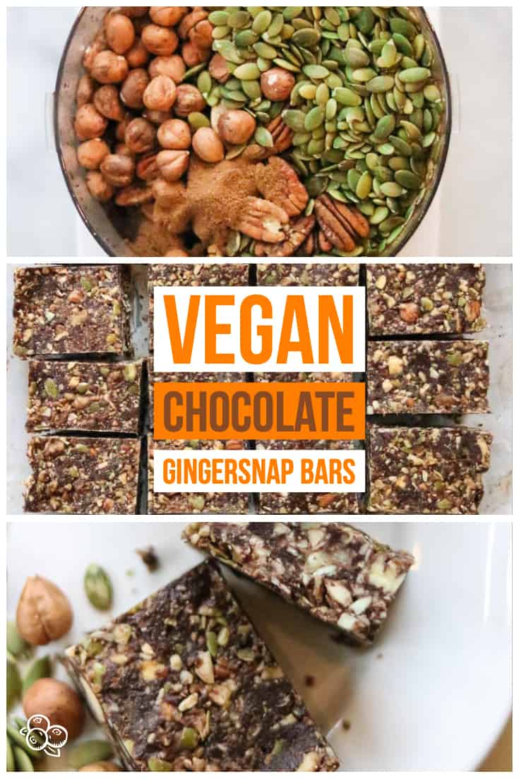 Vegan Chocolate Gingersnap bars that are quick and easy to make!  These require no baking, have no refined sugar, and are gluten free!  Perfect healthy snack or part treat! #vegansnack #dates